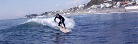 SurfLive20100110